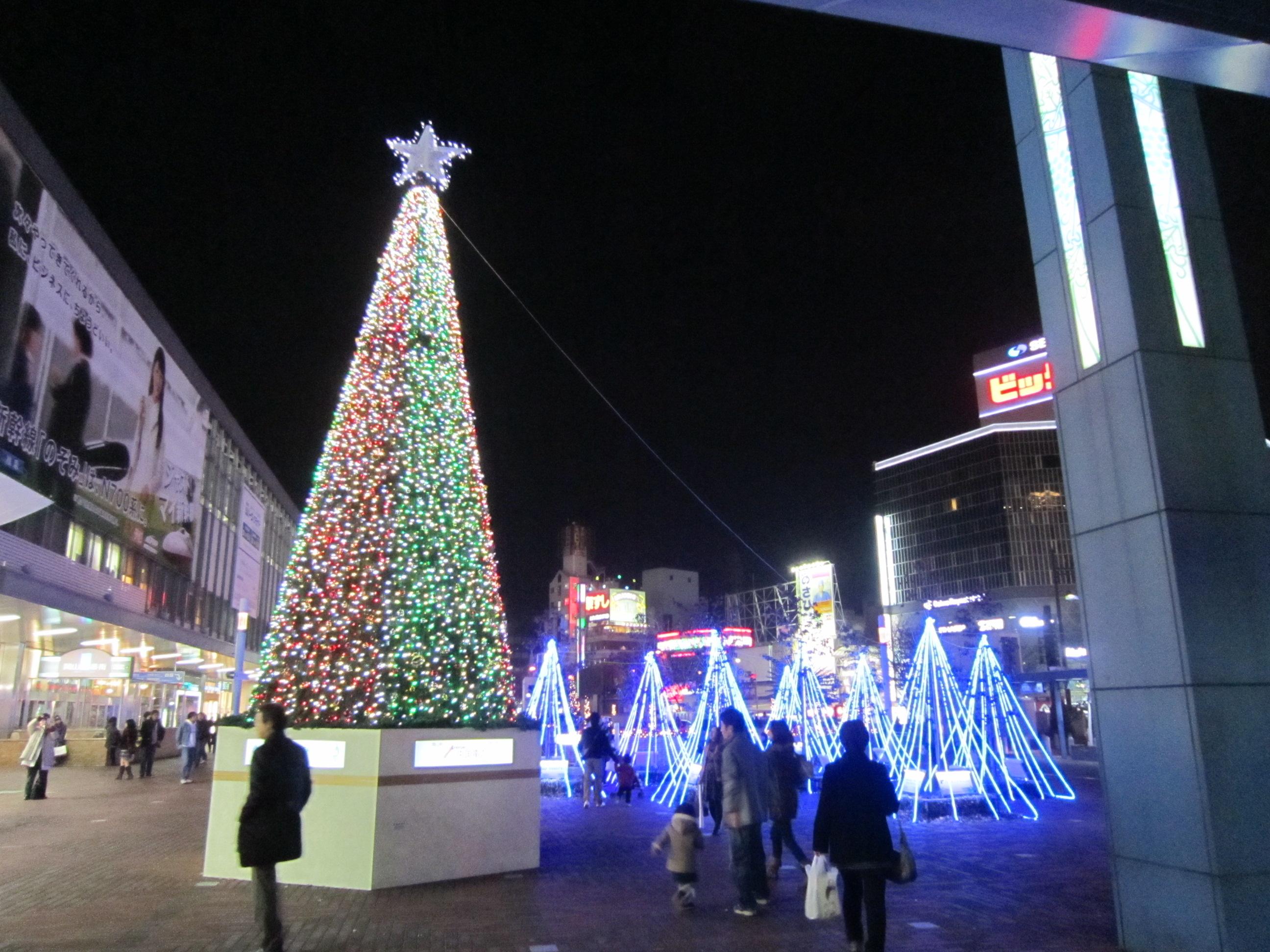 http://www.t-ueda.jp/myblog/IMG_1407.JPG